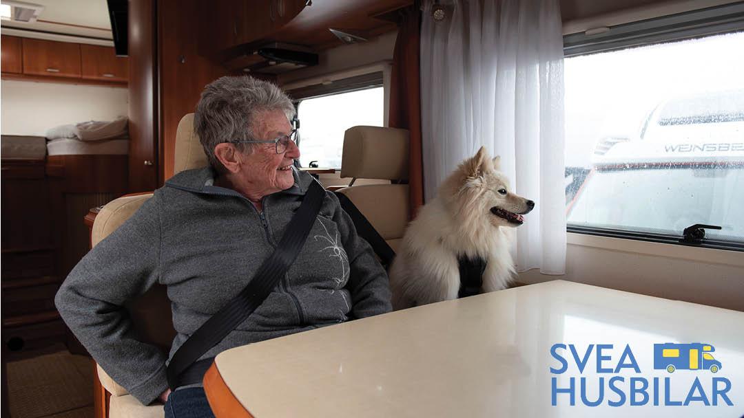 Resa med hund i husbil
